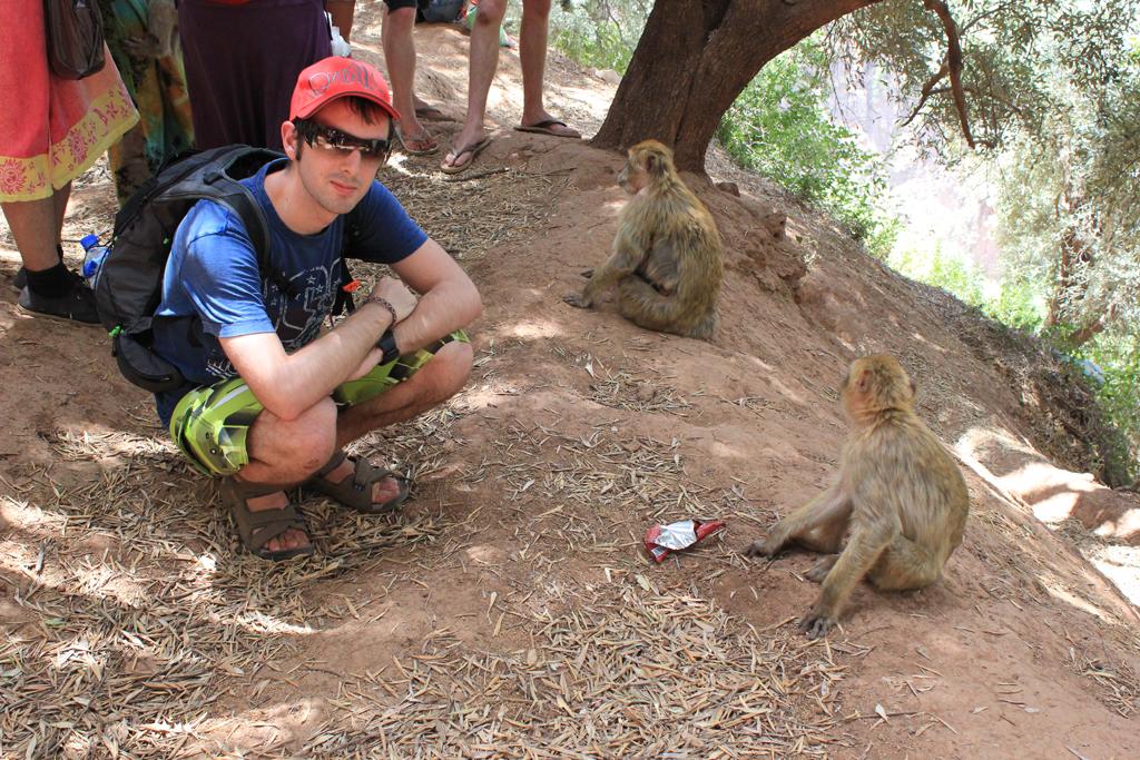 Aitor con los monos - Marruecos