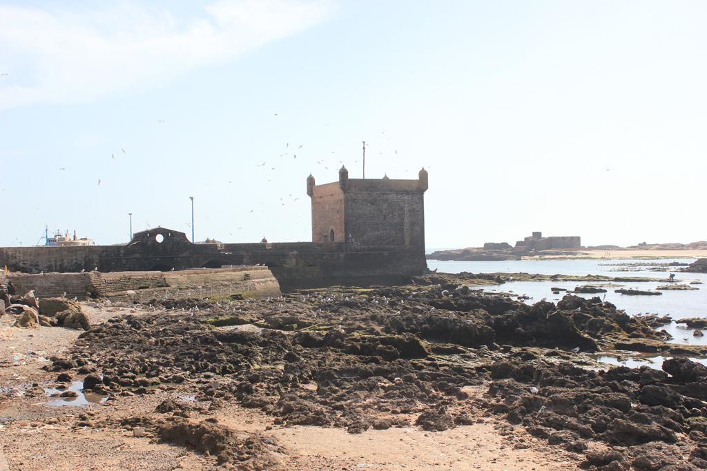 Costa de Essaouira