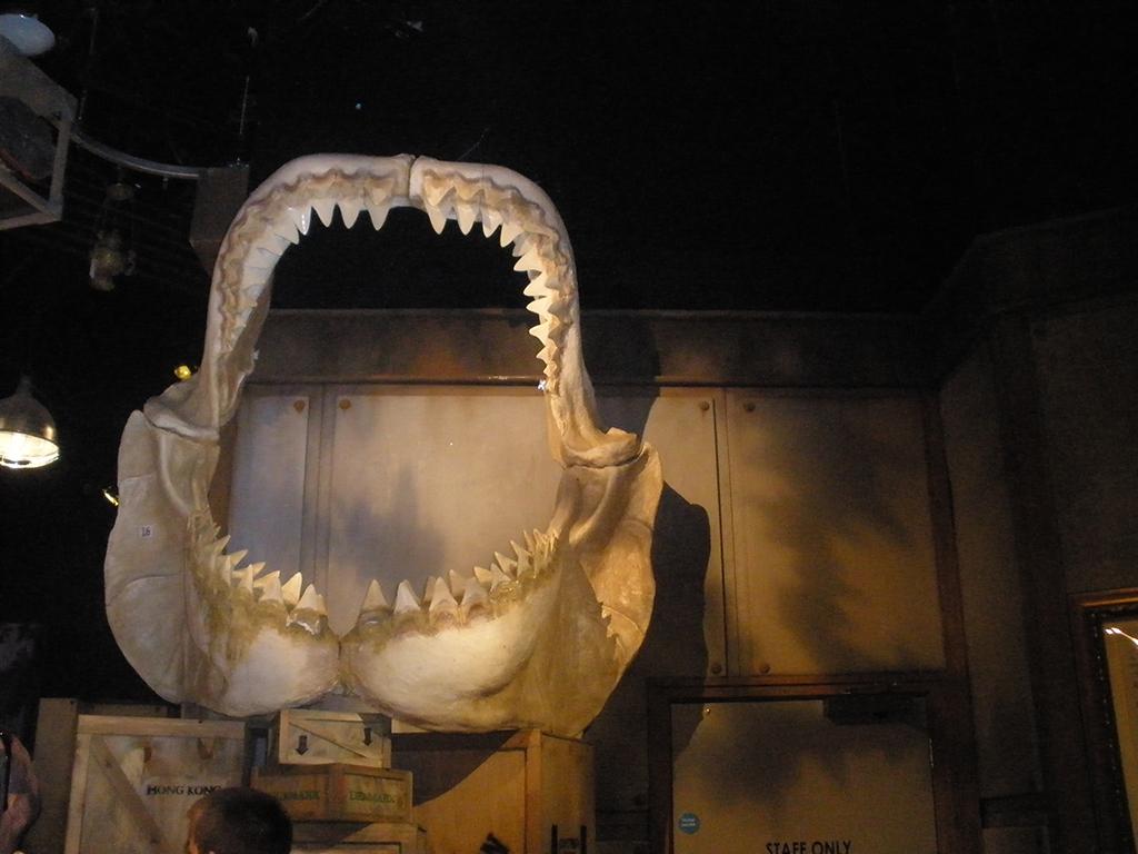 Mandibula gigante en el museo Ripley de Londres