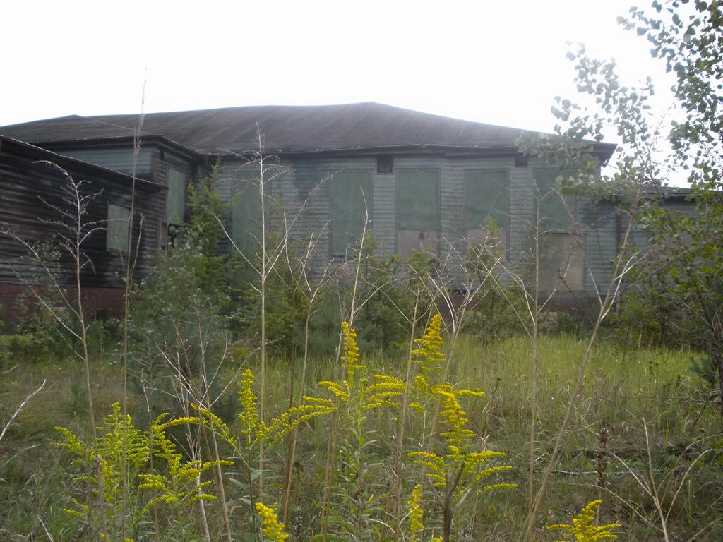 Monstruo verde - Sachsenhausen