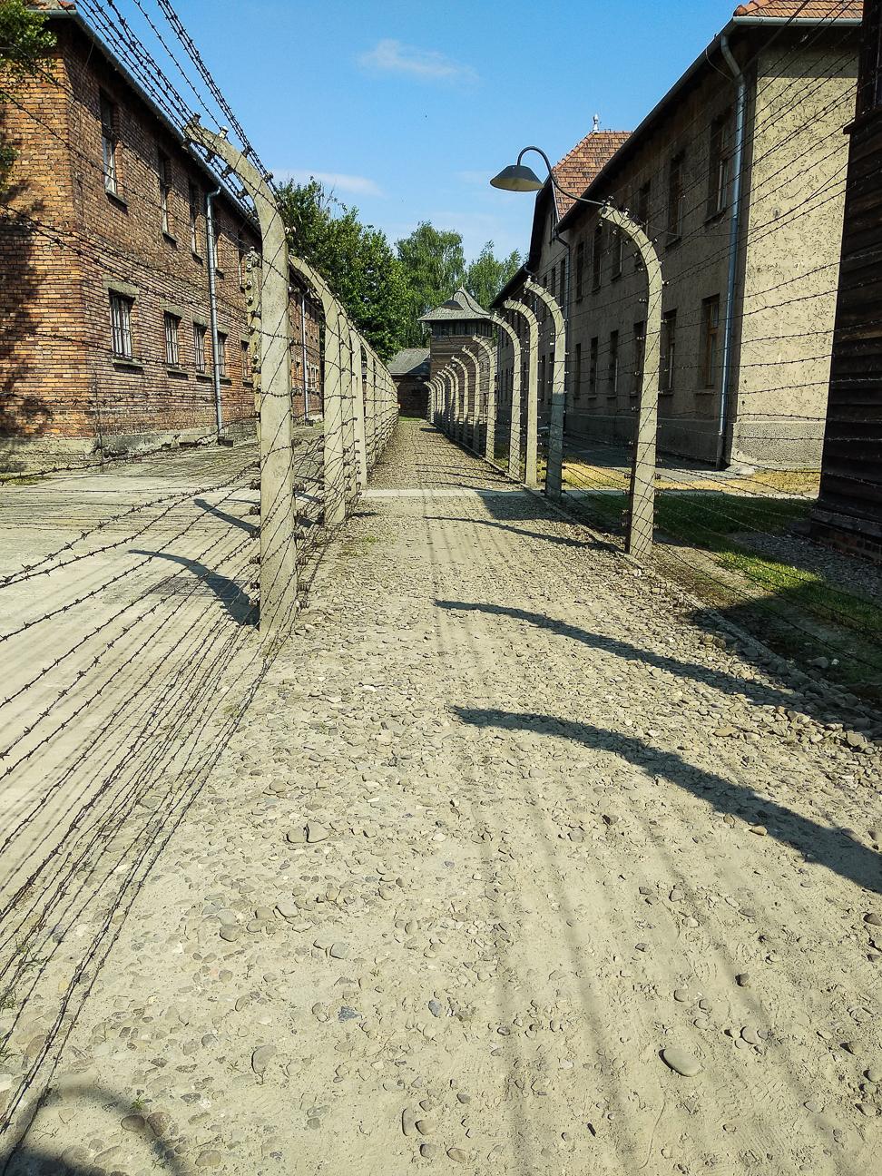 Alambradas campo concentracion polonia