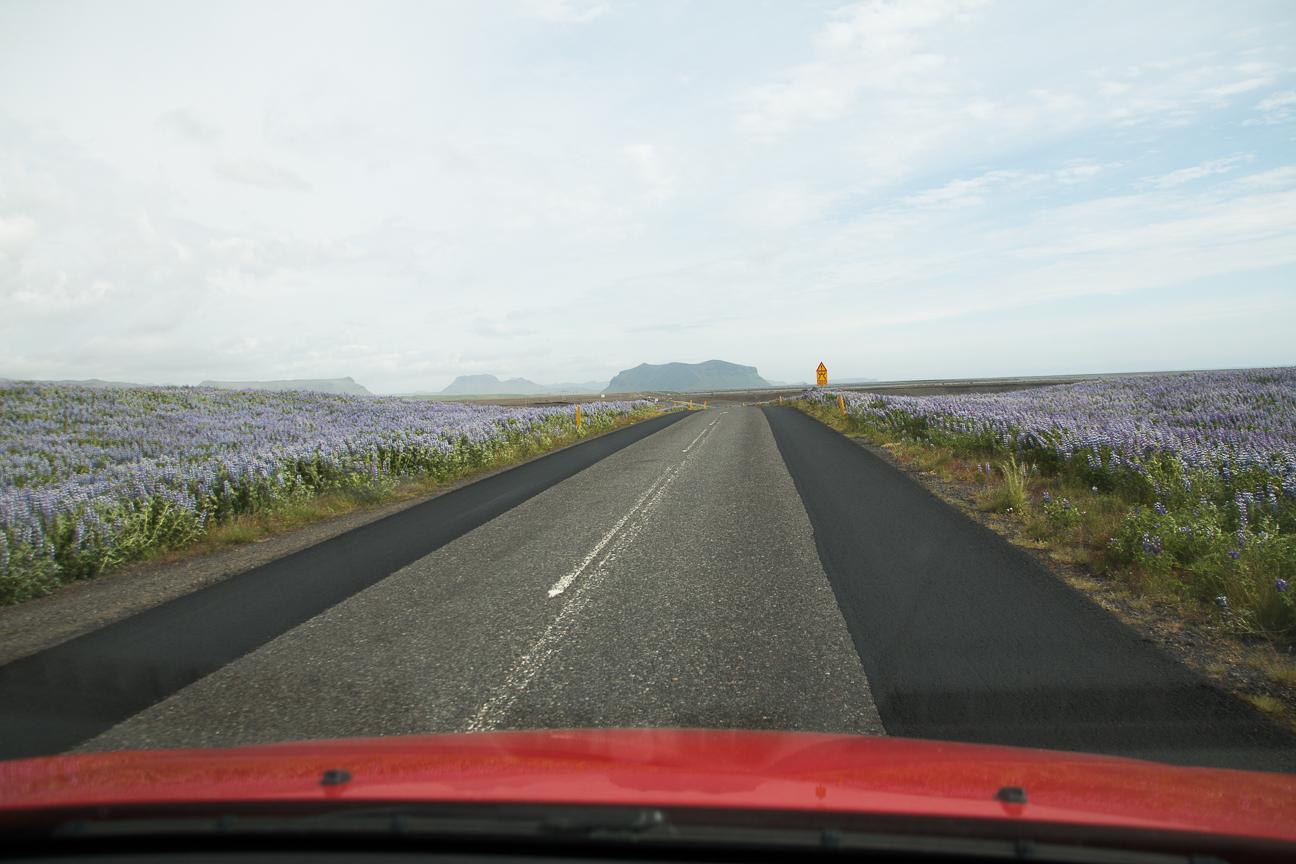 Conduciendo por Islandia