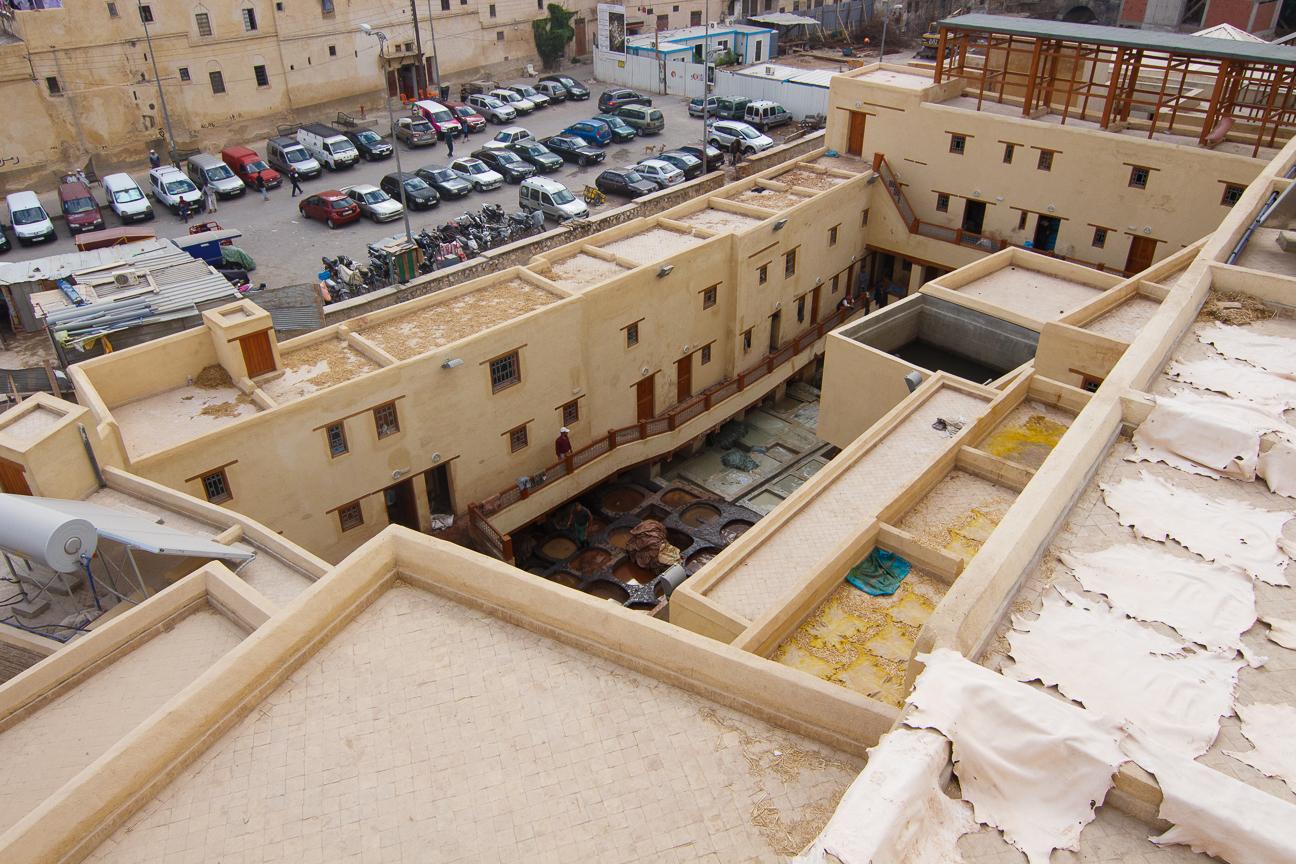 Cortidurias en Fez