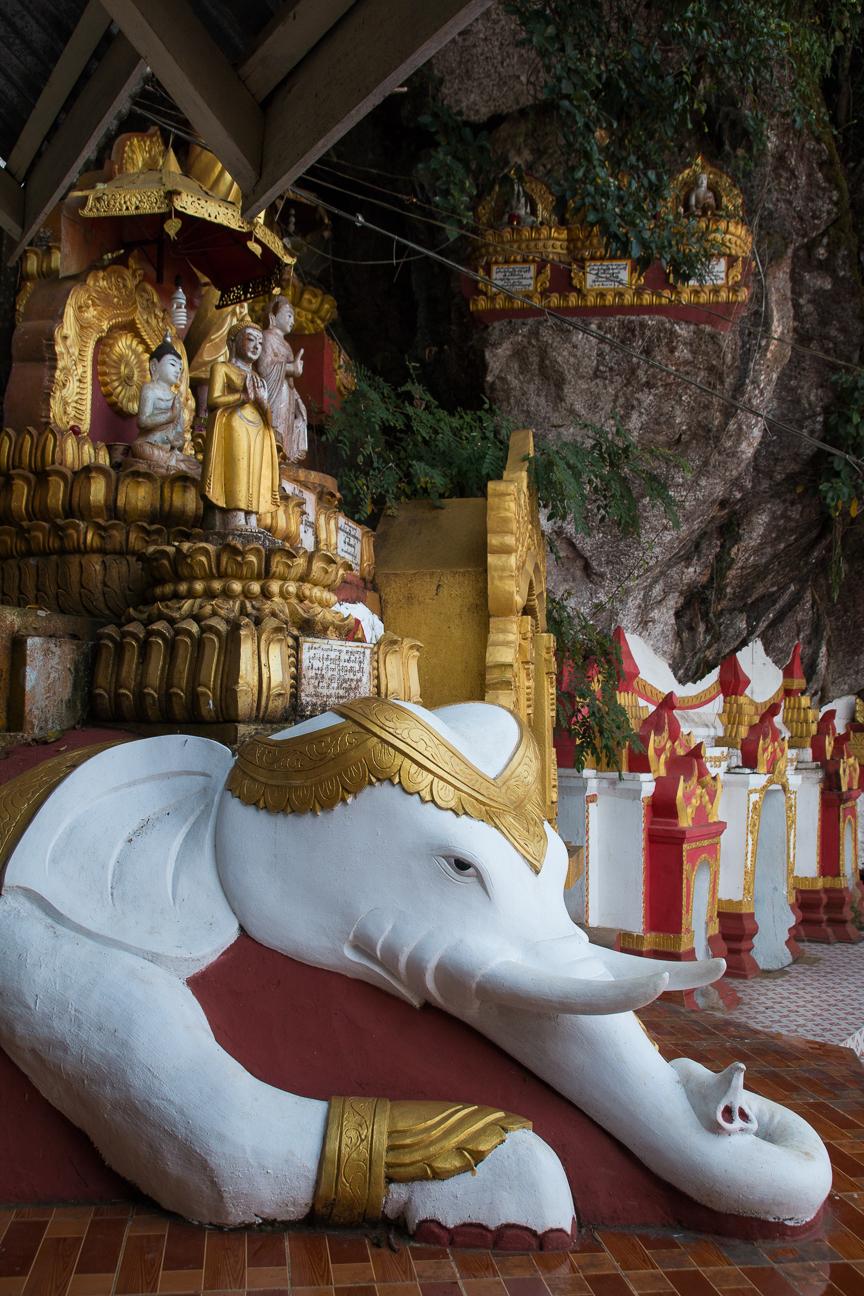 Elefante a la entrada de la cueva