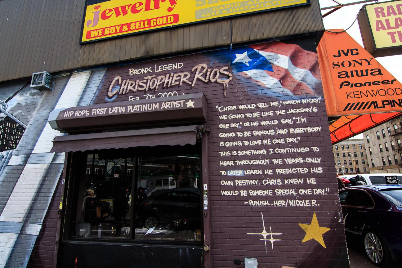 Excursion Contrastes Nueva York - Bronx Legend