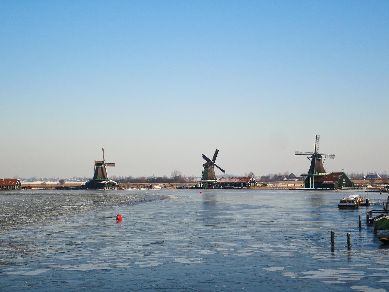 Que ver en Amsterdam molinos de viento