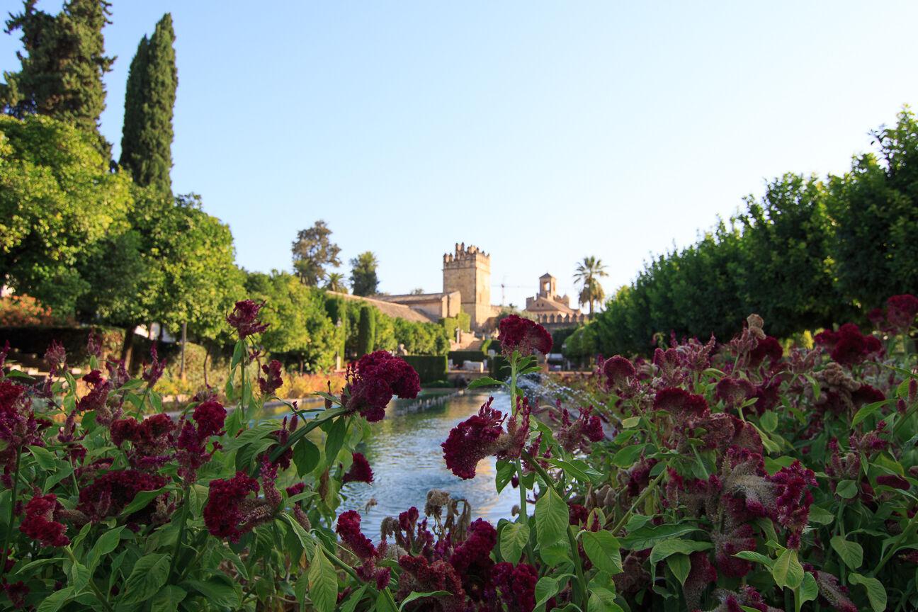Que ver en Cordoba - Jardines del Alcazar