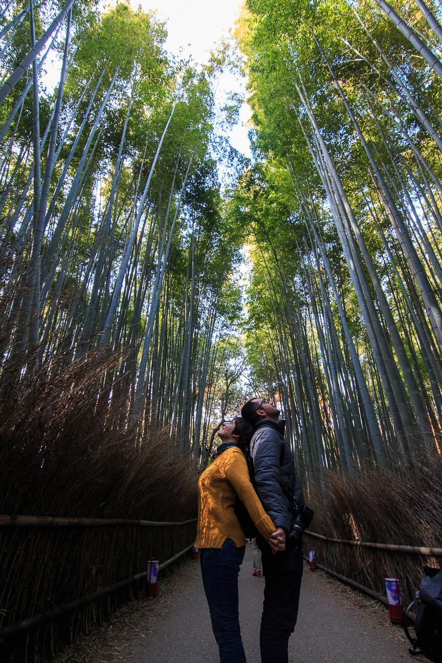 Que ver en Kioto bosque Arashiyama