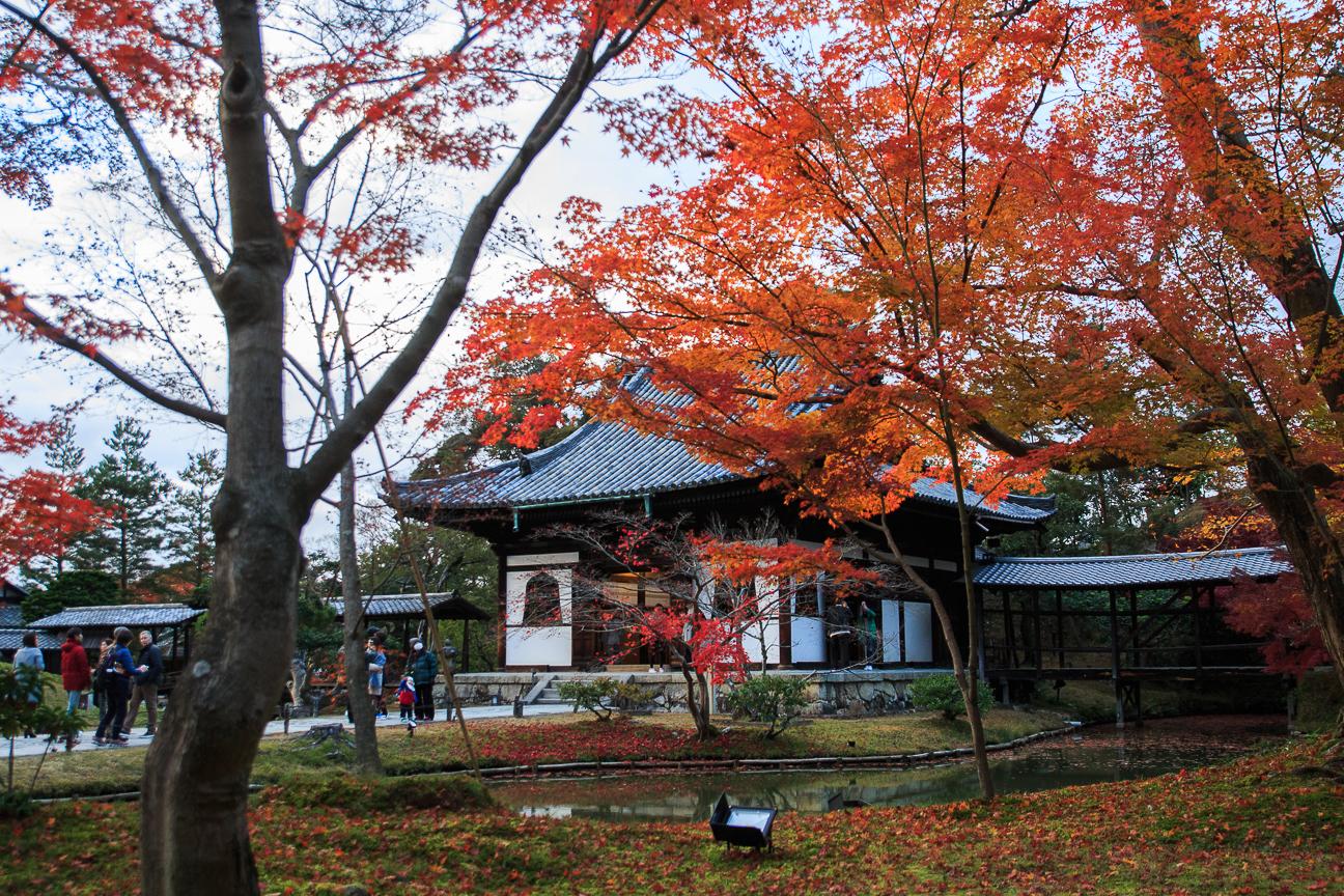 Que ver en Kioto templo Zenrin-ji