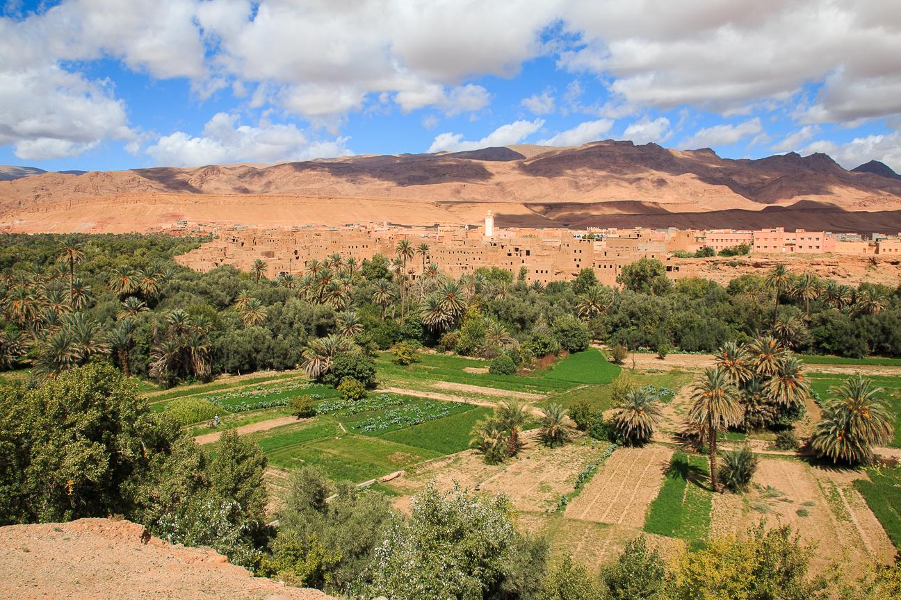Que ver en Marruecos Oasis en el desierto