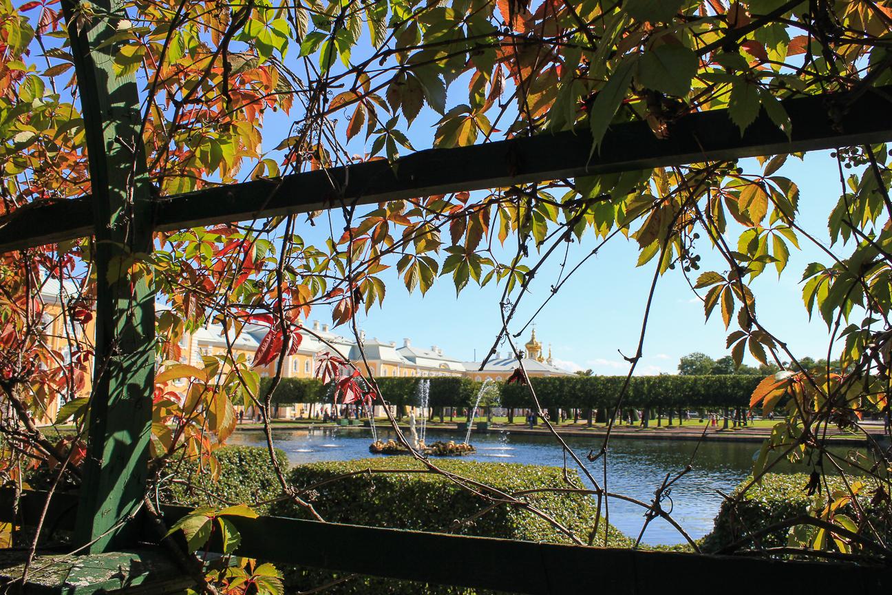 Que ver en San Petersburgo - Jardines superiores Palacio Peterhof