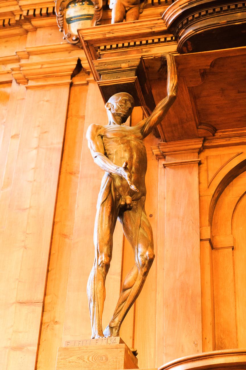 Teatro anatomico de la universidad de Bolonia
