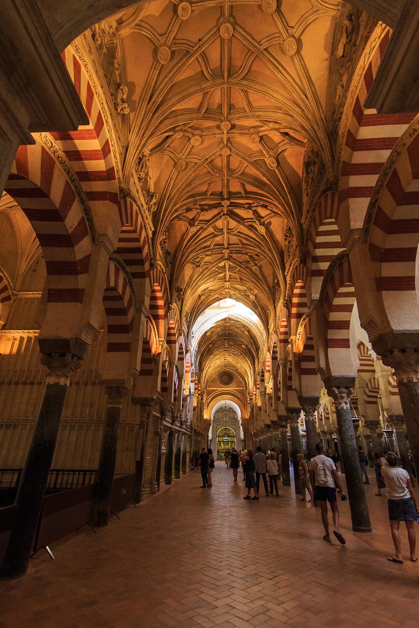 Techos goticos de la mezquita de Cordoba