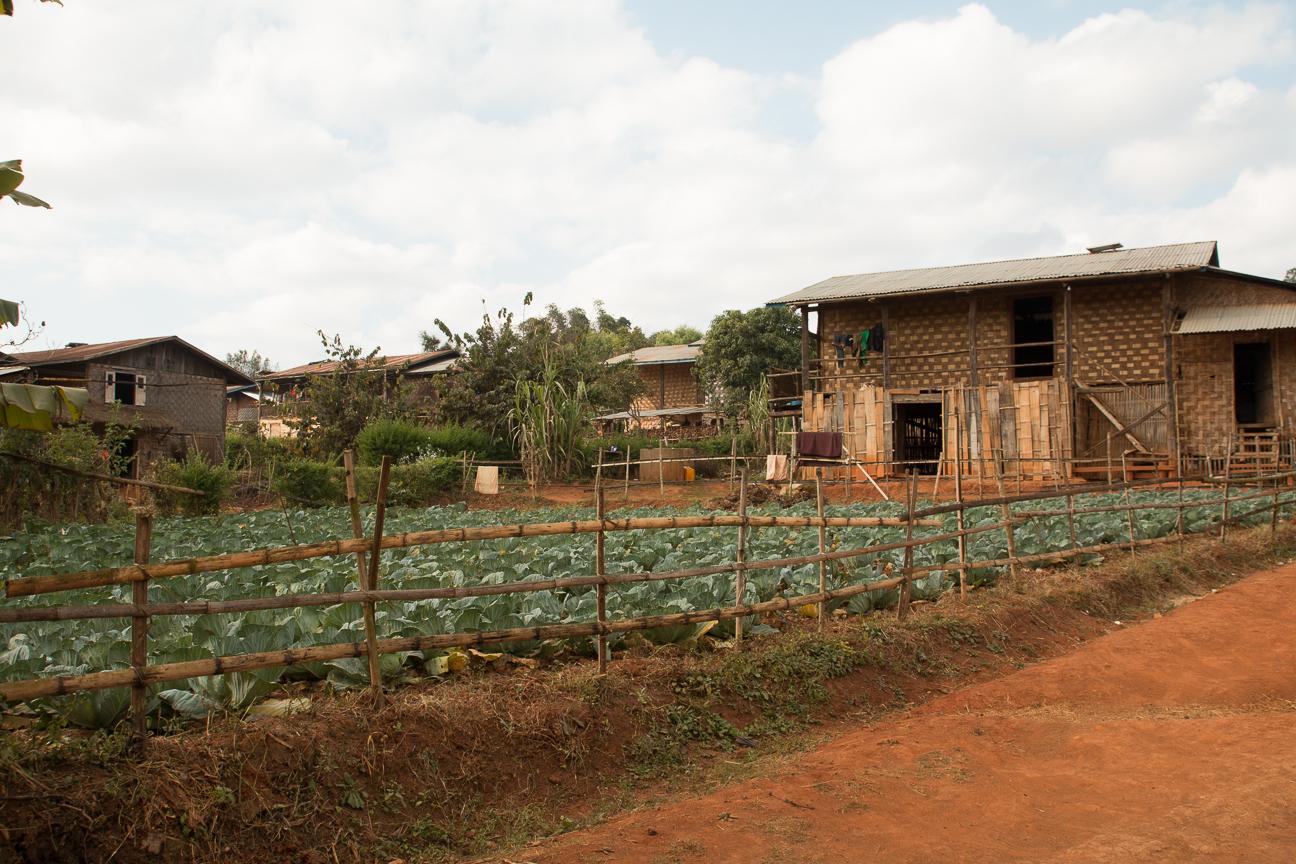 Tipicas casas del Myanamar rural