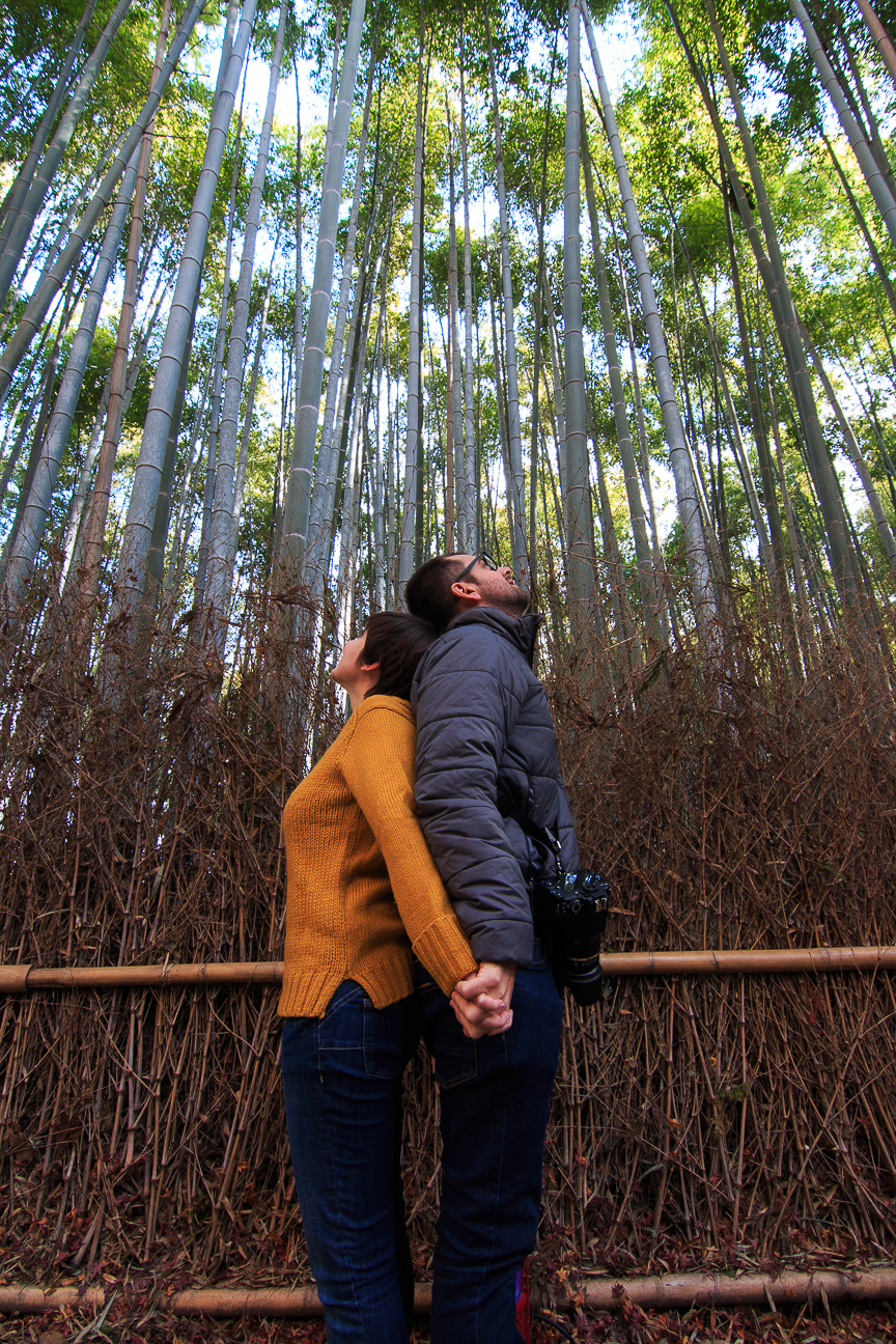 Viaje a Japon Arashiyama bosque bambu